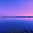 Backwater reflections by Prasad