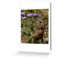Embrace The Beauty Around You Greeting Card