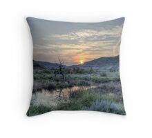 Warming Trend Throw Pillow