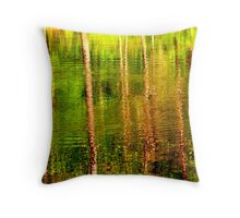 A facade Throw Pillow