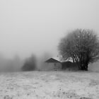 A little Snow House by Angelika  Vogel