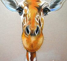 Up Close and Personal Giraffe by Michelle Potter