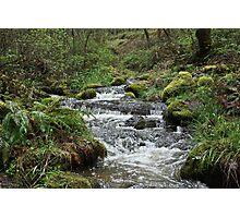 Wagner Creek Photographic Print