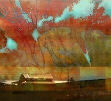 Whidbey Island by Elizabeth Bravo