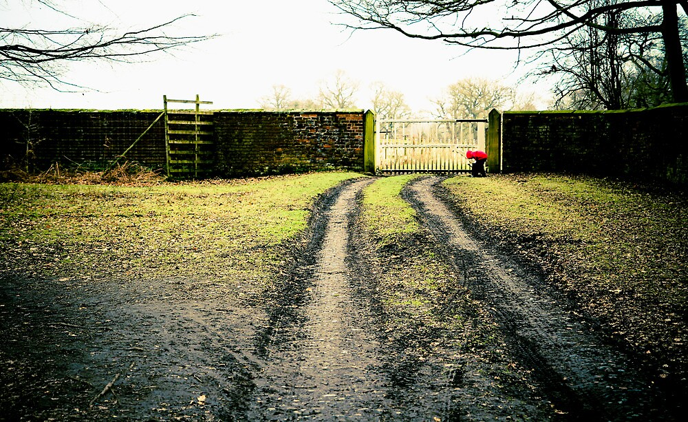 Dunham Park, cold winters day. by elspiko
