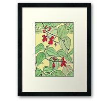 Scarlet runner beans Framed Print