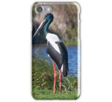 All Alone On The Ponds iPhone Case/Skin
