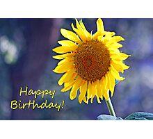 Sunflower Happy Birthday Card Photographic Print
