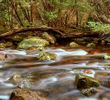 Stony Creek Halls Gap 2 by Jeff Reid