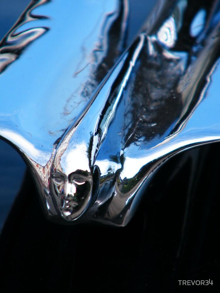 Black Cadillac.... Chrome Thingy by TREVOR34