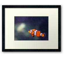 Clowning around. Framed Print