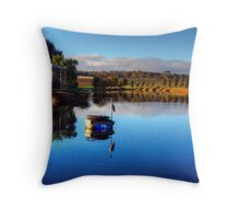Early morning winter light across the Barossa Valley Throw Pillow