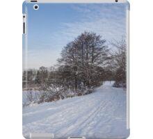A Pale Blue Snowday  iPad Case/Skin