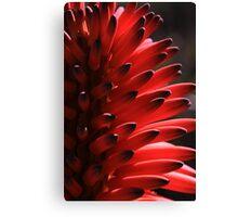 Floral Fingers Canvas Print