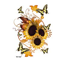 SunFlowers and Butterflies Photographic Print