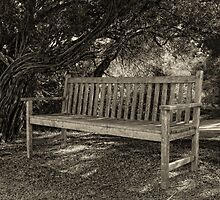 A place to rest by Lois Romer