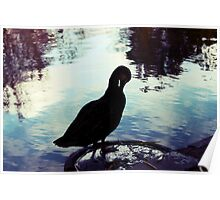 Lomo duck! Poster