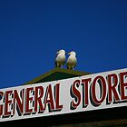 general store. wilsons prom - victoria by tim buckley | bodhiimages photography