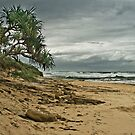 Dicky Beach by Glen-Michael Pepprell