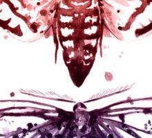 Moth Specimen Sticker