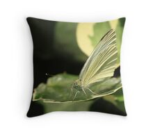 Small White Butterfly Throw Pillow