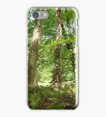 Yellow Birch by the river iPhone Case/Skin