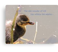 Within The Depths (Duckling)  Canvas Print