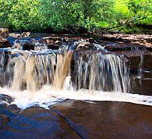 Water, Water,Water Everywhere by Trevor Kersley