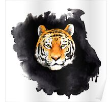 tiger head on black spot Poster