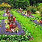 Flower Garden Plot by ciaobella2u
