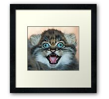 I may be small but these little teeth are still sharp!! Framed Print