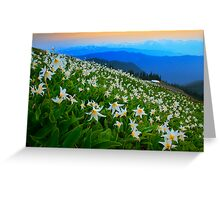 Flower Avalanche Greeting Card