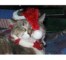 Christmas - Bah Humbug! Photographic Print