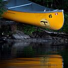 Yellow Canoe by Laura Cooper