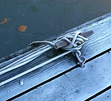 Cleat on Dock by scooterdude