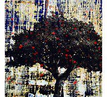 Red Light's Tree Photographic Print