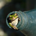 Frog in Watering Can by scooterdude