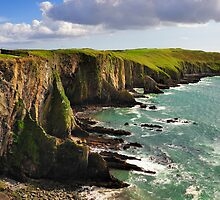 Old Head Of Kinsale by Stefan Schnebelt