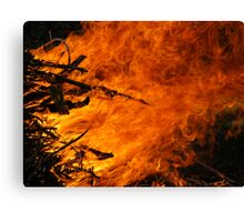 Raging Fire Canvas Print
