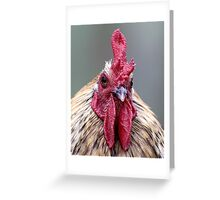 Ruler of his Roost Greeting Card