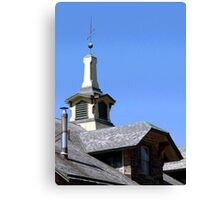 ROOF TOPPER Canvas Print