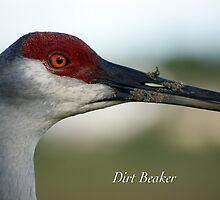 Dirt Beaker by JpPhotos