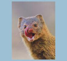Slender Mongoose - Taste for Life Baby Tee
