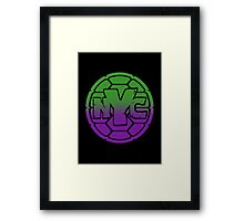 Turtles - NYC  Framed Print
