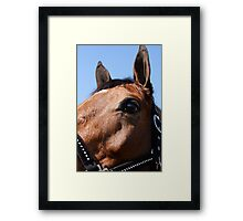 Portrait of a Horse, I Framed Print