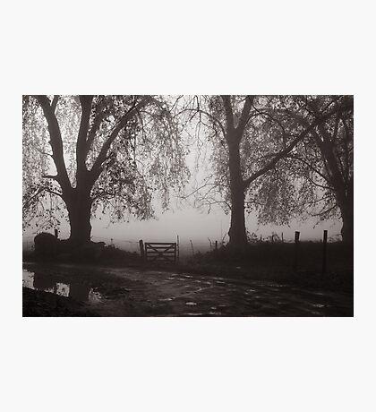 door in the fog Photographic Print
