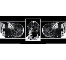 Triptych for (Ph)Dilettante Photographic Print