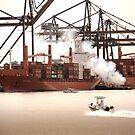 Cargo by Alexander Kok
