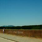 Lucca Walls by Sam Mortimer