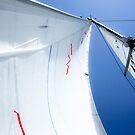 Sail by Alexander Kok